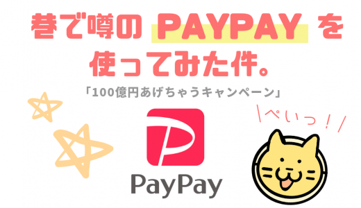 【100億あげちゃうキャンペーン】巷で噂のPaypayを使ってみた件!本当に20%還元されるのか?※12月13日終了